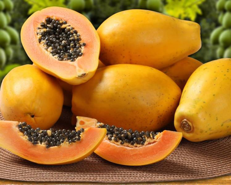 Enzyme from Carica Papaya